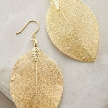 La Soula Golden Leaf Earrings in Gold Size: One Size Earrings