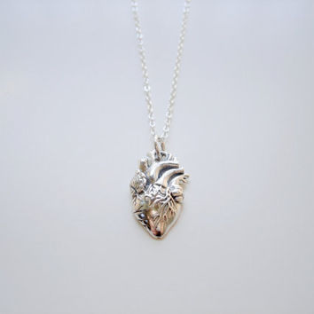 Anatomical - Sterling Silver Anatomically Correct Heart Human Organ Anatomical Heart Necklace by Woodsy Darling