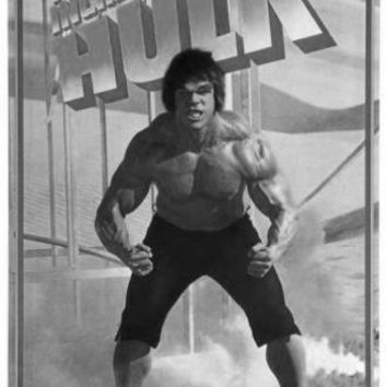Incredible Hulk The poster Metal Sign Wall Art 8in x 12in Black and White