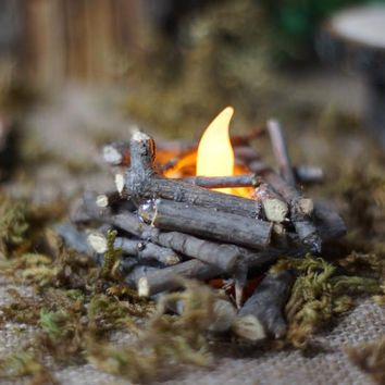 Mini Fire Pit, Fairy Garden