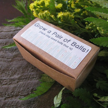Grow a pair of balls-- gag gift- herb clay seed balls- oregano and basil