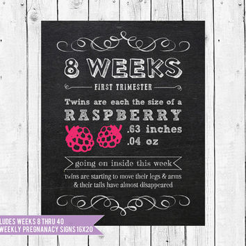 Bi-Weekly TWINS Pregnancy Chalkboard // Twins Photo Prop // Baby is the size of // Set of 17-16x20 // Instant Download JPEG Printable