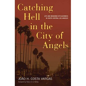 Catching Hell in the City of Angels: Life And Meanings of Blackness in South Central Los Angeles (Critical American Studies)
