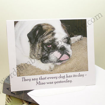 Catty Cards Greeting Cards. Brutus the Bulldog Is Not Having A Good Day. Blank Pet Lover Post Card. Animal Photo Dog Pic. Funny Pup Saying