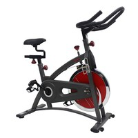 Sunny Health & Fitness Belt Drive Upright Exercise Bike (Grey)