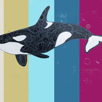 Orca Art Print - Zentangle Killer Whale Archival Reproduction