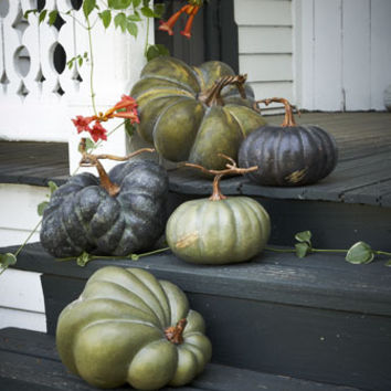 Park Hill Collections Five Faux Heirloom Pumpkins