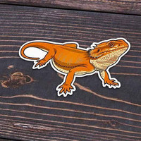 Orange Bearded Dragon Sticker or Magnet
