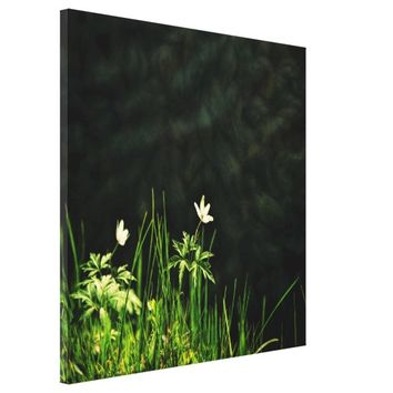 White wildflowers on a dark riverbank canvas print