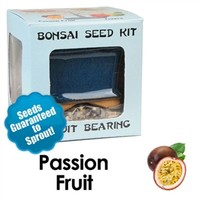 Passion Fruit Bonsai Seed Kit | Eve's Garden Gifts