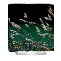 Sedge Grasses in Provence Shower Curtain