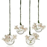 Chive Set of 4 Hanging Aerium Orb Vases at MYHABIT