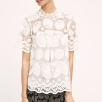 HD in Paris Lily Lace Blouse in White Size: