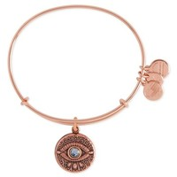Alex and Ani Evil Eye Adjustable Wire Bangle (Nordstrom Exclusive) | Nordstrom