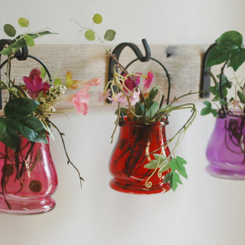 Colored Mix Jar Trio Wall Decor with Wrought Iron hooks on rustic wood board