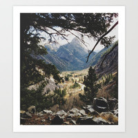San Juan Forest Art Print by Kevin Russ