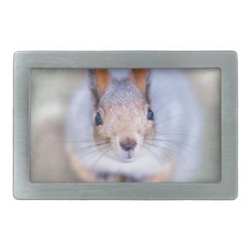 Squirrel looks at you from the bottom up rectangular belt buckle
