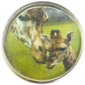 Mom Giraffe Nose Kissing Adorable Baby Picture 18MM - 20MM Fashion Snap Jewelry Charm New Item