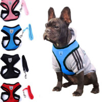 Cute Small dog Harness with Leash