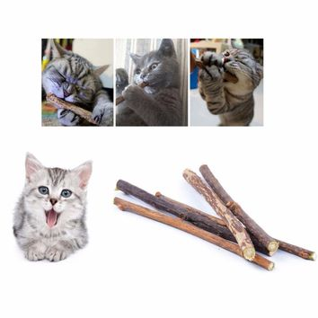 20pcs Pure Natural Catnip Pet Cat Molar Toothpaste Stick Chewing Cleaning Teeth Teeth Cat Toys Snacks Sticks Pet Cat Supplies