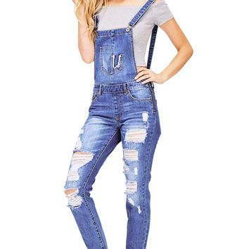 Polarize Denim Overalls