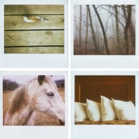 Tranquil Polaroid photography by VioletJulia | Gentle Pure Space