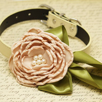 Champagne Floral Wedding dog collar, Country rustic wedding, Olive green pet collar