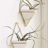 Umbra Trigg Wall Planter Set | Urban Outfitters