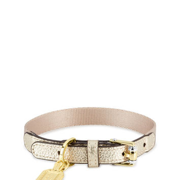 Influencer Pet Collar