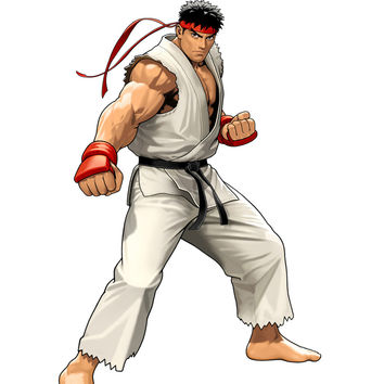 Commission Request Street Fighter - Hoshi Ryu Cosplay Costume CP153314