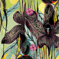Flowers 2 Art Print by Felicia Atanasiu