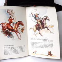 1950s Childrens Book All About Horses from the Do You Know Series / English Vintage Book Gift for Horse Lovers / Shetland Pony Shire