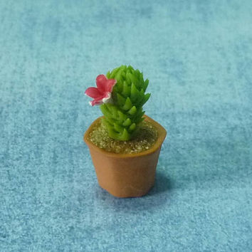 Miniature cactus red flower /Dollhouse miniatures/ Fake plants/ Mini plants/ Miniature garden plants