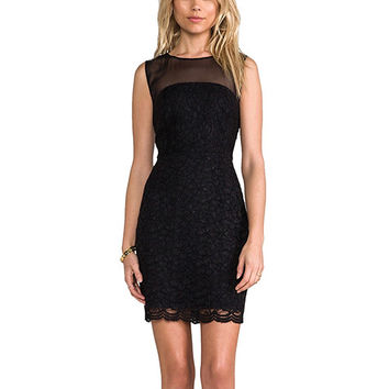 Black Sheer and Lace Embroidered Mini Dress