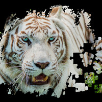 TIGER PUZZLE Art Print by Catspaws