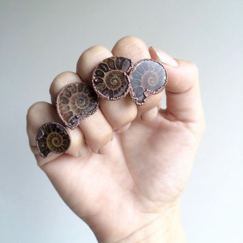 Ammonite fossil ring | Electroformed ring | Raw fossil jewelry | Women or men's ring | Mens jewelry |  Fossilized ammonite ring