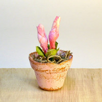 Pink Shabby Miniature Dollhouse Plant Fairy Garden Flowers in Clay Pot