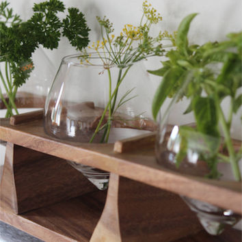 Window Sill Herb Holder in Natural Wood