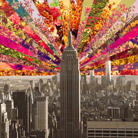BLOOMING NY Art Print by Bianca Green