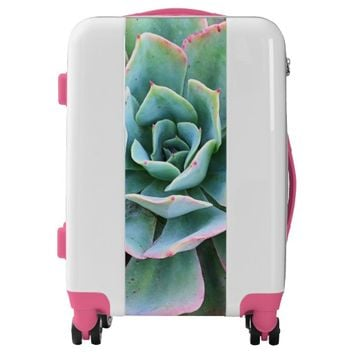 Mint green cactus close-up photo luggage suitcase