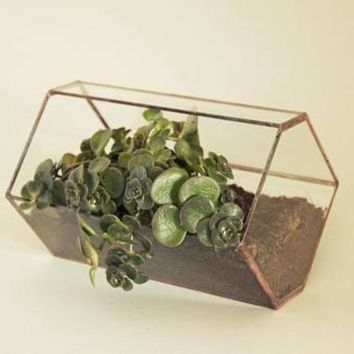 Geometric indoor planter Glass terrarium
