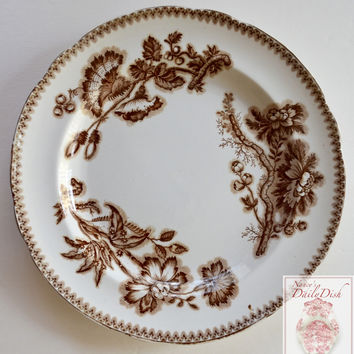 c1865-85 Spode Copeland Aesthetic Movement Botanical Brown Transferware Plate Roses Seed Pods