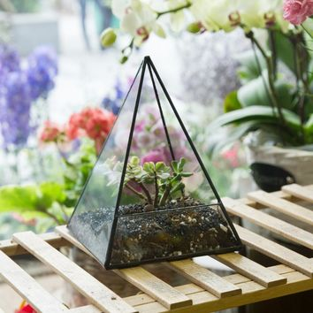 Modern Tabletop Geometric Glass Terrarium Window Sill Box Succulent Flowerpot Pyramid Plants Container Planter Bonsai Flower Pot
