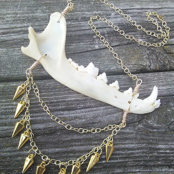 Jaw Bone Necklace,Coyote Bone ,Real animal Bone Jewelry,Wiccan Pagan Jewelry,Shaman Necklace, Gypsy Jewelry, Warrior Larp Cosplay Jewelry