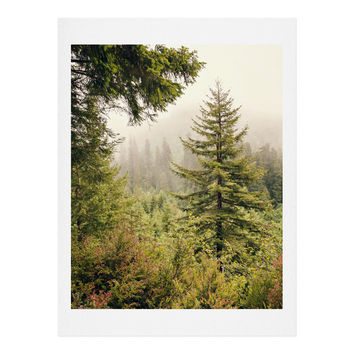Catherine McDonald Into The Mist Art Print