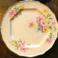 Pair of Medium Sized Pink Floral China Plates with Platinum Trim Made by Taylor Smith & Taylor