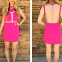 Pink Sleeveless Dress with Nude Mesh Detail