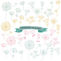 BUY2GET1FREE- Hand drawn dandelion clipart- for scrapbooking-invitation- pink-blue-green-yellow dandelion-commercial use