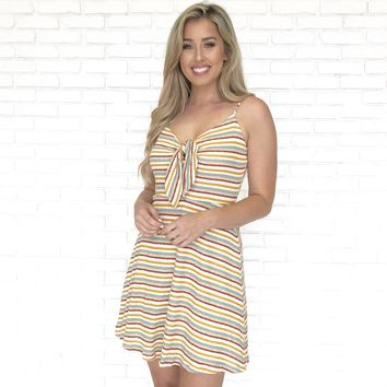 Sweet Stripe Skater Dress