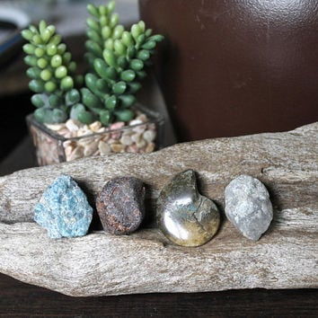 INWARD JOURNEY SET - Blue Apatite, Rhodolite Garnet, Ammonite Fossil, Celestite, Raw Healing Stone Set, Reiki Healing Jewelry Making Supply